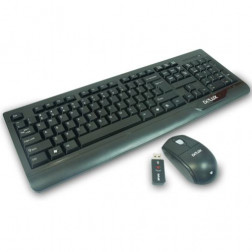 Delux Tastatur-Maus-Set  DLK-6000G kabellos wireless